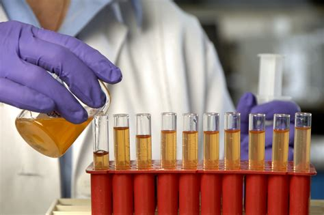 Office of Research backs new scientific study into COVID ...