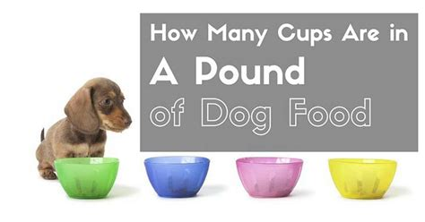 how many cups equal a pound dog food cups per pound food ideas