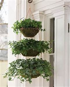 Best 25 Hanging wire basket ideas on Pinterest