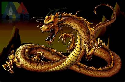 Dragon Gold Wallpapers Chinese Asian Background Yin