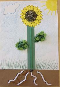 Parts Of A Plant Activity  Brown Construction Paper For