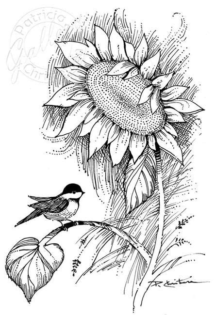 Chickadee & Sunflower | Sunflower coloring pages, Sunflower drawing, Flower line drawings