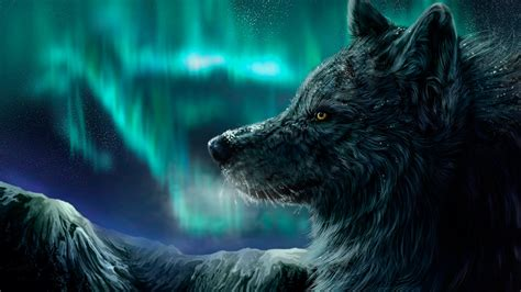 wallpaper wolf aurora polaris  art