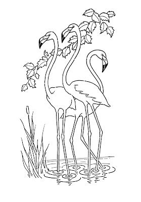 kids printable flamingo coloring page  graphics fairy
