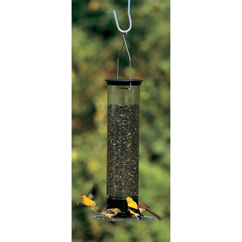 droll yankee bird feeders droll yankees 174 tipper squirrel proof bird feeder 163491