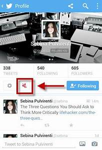 Comment Débloquer Un Contact : comment activer la fonction mute de twitter et masquer les tweets de certains contacts ~ Maxctalentgroup.com Avis de Voitures