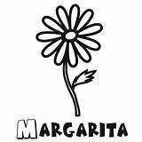 Margarita Glass Coloring Pages Template Dibujo Una sketch template