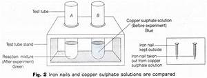 Cbse Class 10 Science Lab Manual - Types Of Reactions