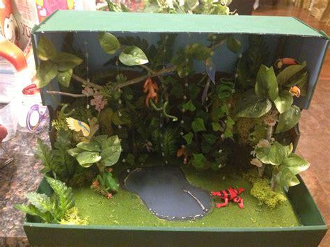 Tropical Rainforest Ecosistemas Proyectos escolares