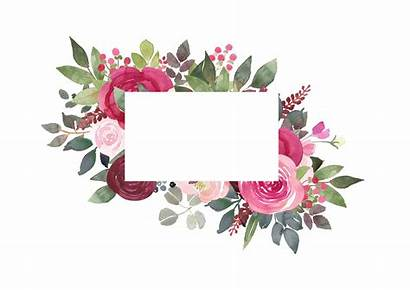 Burgundy Floral Clipart Watercolor Flower Blush Frames