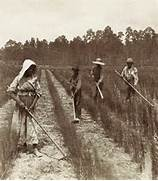 in 1680 four fifths of south carolina s population was  Slavery In The South