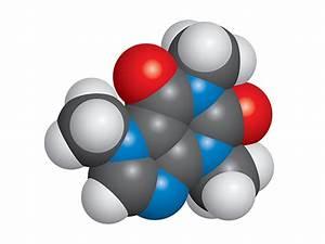 Caffeine molecule vector space-fill model C8H10N4O2 v2 ...