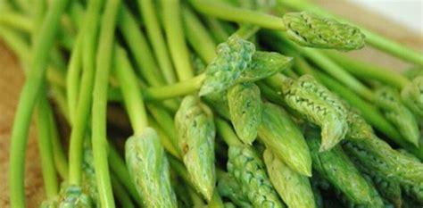 cuisiner des asperges sauvages recette de la brouillade aux asperges sauvages cuisinez