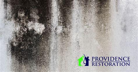 mold removal  charlotte nc