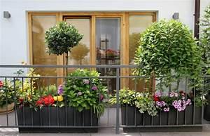 Balkon Gestalten Ideen : balkonbepflanzung den balkon vor freude strahlen lassen ~ Lizthompson.info Haus und Dekorationen