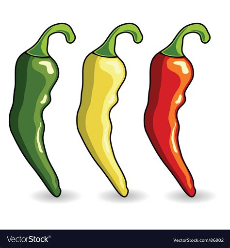 Mexican Hot Chili Peppers Royalty Free Vector Image