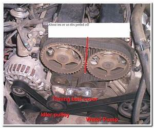 2000 Ford Focus Timing Belt Diagram