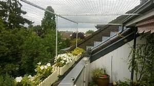 katzennetz und balkonkasten blumenkasten mit katzennetz With französischer balkon mit garten katzensicher machen