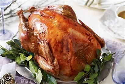 Turkey Maple Glazed Recipes Christmas Recipe Delicious