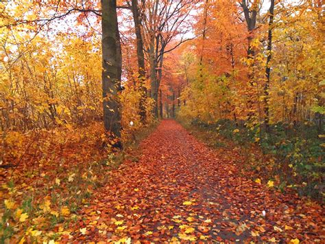 herbst bilder autumn pics