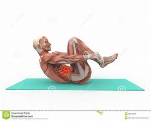 Abdominal Stock Photos - Image: 29479443