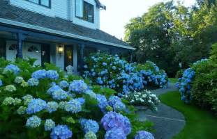 kitchen remodeling ideas a blue garden traditional landscape vancouver