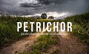 32 Of The Most ... Petrichor