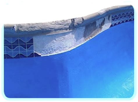 pool waterline tile replacement diy repairs to swimming pool tile intheswim pool