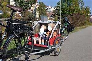 Fahrradanhänger 2 Kinder Testsieger : profex kinderanhaenger mit aluwanne fuer 2 kinder ~ Kayakingforconservation.com Haus und Dekorationen