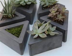 Welchen Beton Zum Basteln : basteln mit beton fettpflanze halter freshouse ~ Buech-reservation.com Haus und Dekorationen