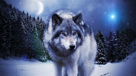 Wolf In The Winter By Alkaa-wolf On Deviantart