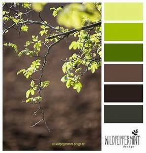 Wandfarbe Grün Palette : farbpalette farbinspiration fr hling hellgr n gr n braun frisch wildpeppermint design ~ Watch28wear.com Haus und Dekorationen