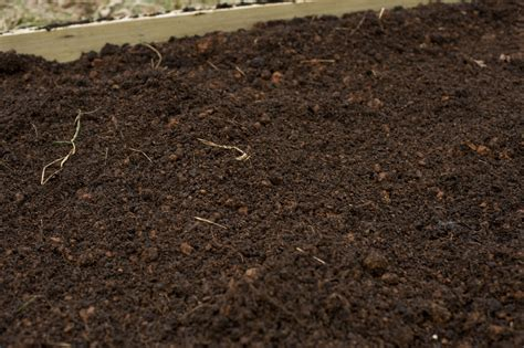 what is loam the impact of chemical fertilizers on the environment