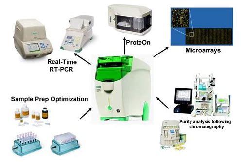 Image analysis software | life science research | bio-rad.