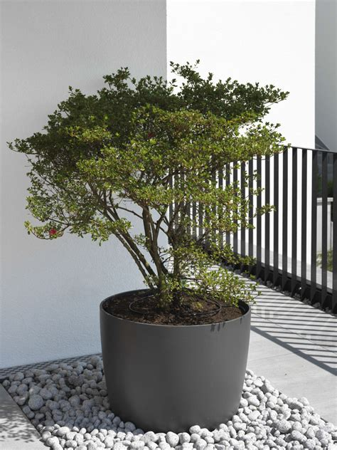 greenform planters kyoto greenform