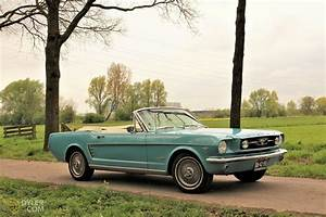 Classic 1966 Ford Mustang 289 V8 for Sale - Dyler