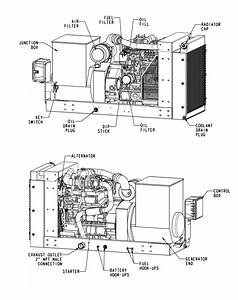45 Kw Diesel Generator Details