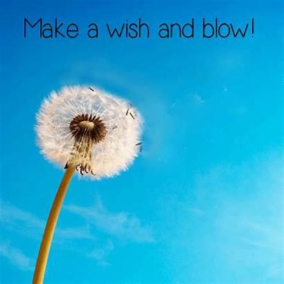 Wish Happy Morning Amazing Blow Them Let