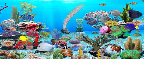 Animated Tropical Wallpaper - aquarium animated wallpaper for windows 7 version