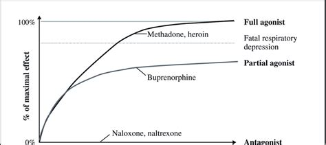 risk  respiratory depression  opioid agonists