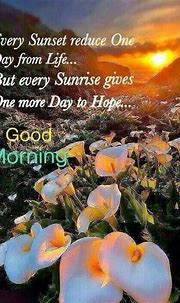 50+ Good Morning Quotes    Best Morning Quotes In English ...