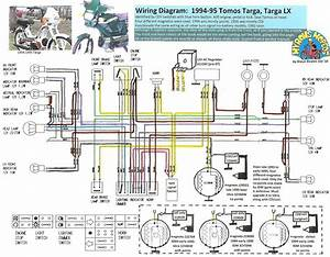 Mini Chopper Wiring Diagram Basic