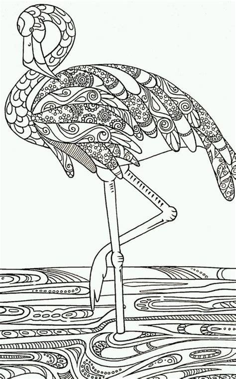 flamingo zum ausmalen einzigartig verschiedene bilder