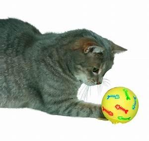 Balle Pour Chat : snaky balle pour chat dans jouets chats bruche nature ~ Teatrodelosmanantiales.com Idées de Décoration
