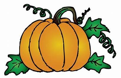 Pumpkin Clip Clipart Printable Vine Clipartion