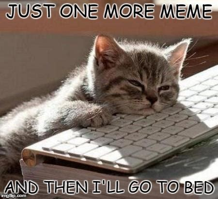 Tired Cat Meme - can t even imgflip