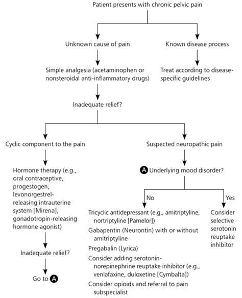 chronic pelvic pain  women american family physician