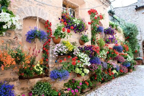 70 Hanging Flower Planter Ideas (photos And Top 10) Home