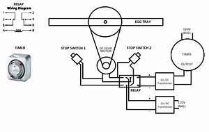 Egg Incubator Motor