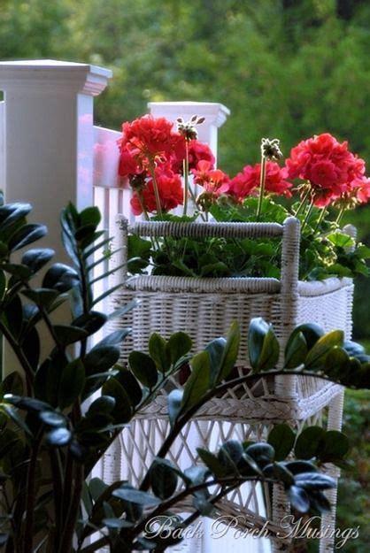 images  red geranium cottage  pinterest